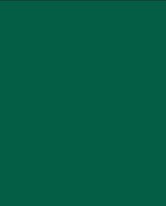 Зелёный цвет (RAL 6005)