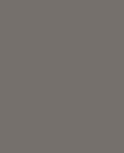Светло-серый цвет (RAL 7005)