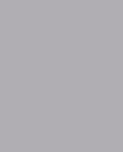 Серебрянный металлик цвет (RAL 9006)