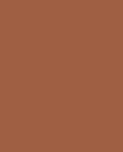 Кирпичный цвет (RAL 8004)