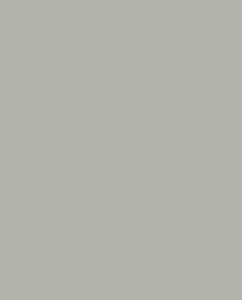 Цинковый серый цвет
